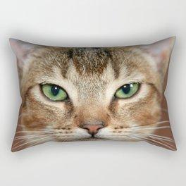 Face of Brown Cat Rectangular Pillow