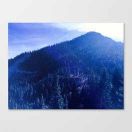 0301 Canvas Print