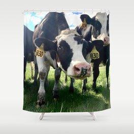 830 Shower Curtain