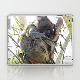 Sleepy Koala Laptop & iPad Skin