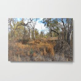 Sunraysia Bushland Metal Print