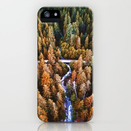 forest aerial view in yosemite iPhone Case