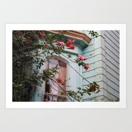 a beautiful rose bush with pink roses overgrowing a light Blue Painted Lady house in San Francisco Art Print