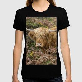Highland Lad T-shirt