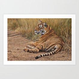 Ranthamboure Roadblock Tiger by Alan M Hunt Art Print