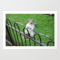 Squirrel Friend Art Print
