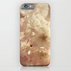 Sprung Slim Case iPhone 6s