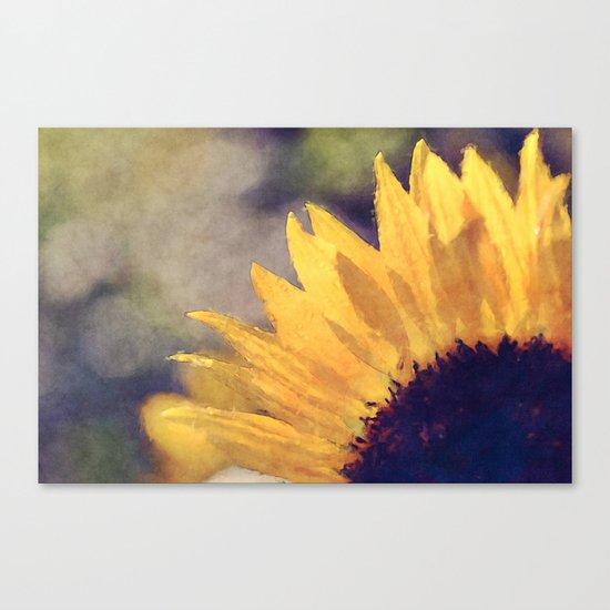 Another sunflower - Flower Flowers Summer Canvas Print
