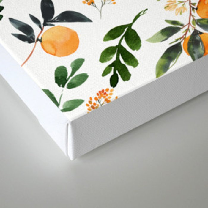 Orange Grove Canvas Print