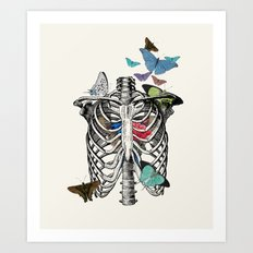Anatomy 101 - The Thorax Art Print