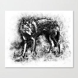 Suburban Outlaw Canvas Print
