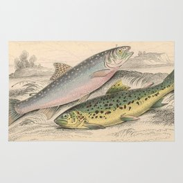 Vintage River Trout Illustration (1866) Rug