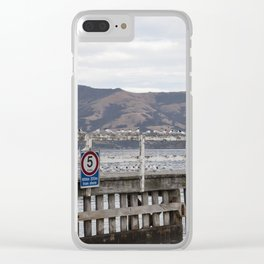 Slow Terns of Akaroa Clear iPhone Case