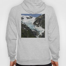 Alaskan Glacier's Prehistoric Animal Shapes in the Snow Hoody