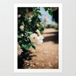 Down the Garden Path, No. 2 Art Print