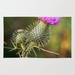 Bull Thistle in Mt. Rogers, Virginia Rug