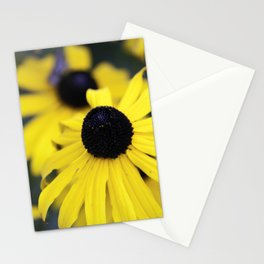 Black-eyed Susans Stationery Cards