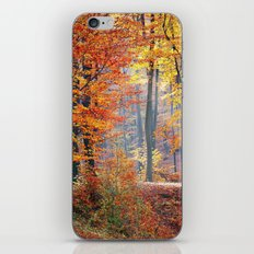 Colorful Autumn Fall Forest iPhone & iPod Skin