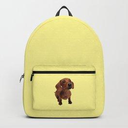 Cute Dachshund Backpack