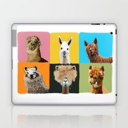 Llama Drama Laptop & iPad Skin