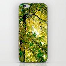 Turn Of The Season iPhone & iPod Skin