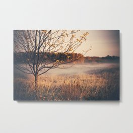 An Early Autumn's Frost Metal Print