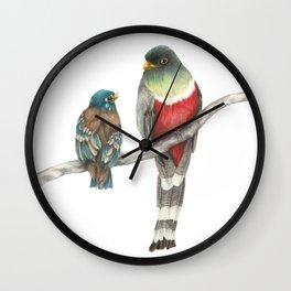 Elegant Trogon & Fledgling Wall Clock