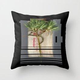 Host of OFF Throw Pillow