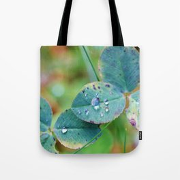 Clover leaves with rain drops Tote Bag