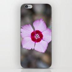 Purple Flower 1 iPhone Skin