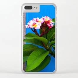 Topical 1 Clear iPhone Case