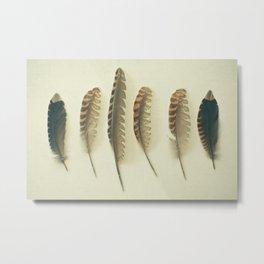 Feathers #2 Metal Print