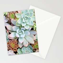 Pastel Succulent Garden Stationery Cards