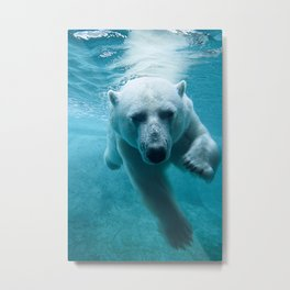 Polar Bear Swimming Metal Print