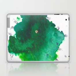 P161 Laptop & iPad Skin