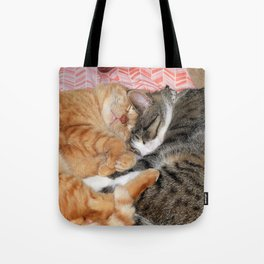 Nap Buddies Tote Bag