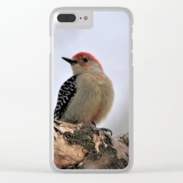 Red Bellied Woodpecker Clear iPhone Case