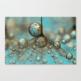 Dandy Shower in Silver & Blue Canvas Print