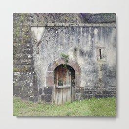 Doors of Perception 1 Metal Print