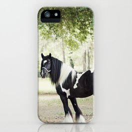 Majestic Horse in Color iPhone Case