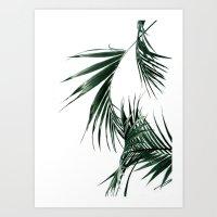palms Art Prints featuring Palms by Rachel De Vita