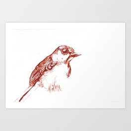 Red Bird Hanging Out Alone Art Print