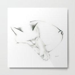 Snuggle Cat Metal Print