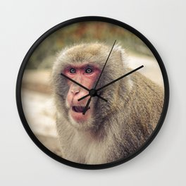 Japanese Snow Monkey Watching Lincoln Park Zoo Wall Clock