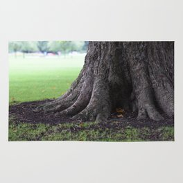 Cambridge tree 3 Rug