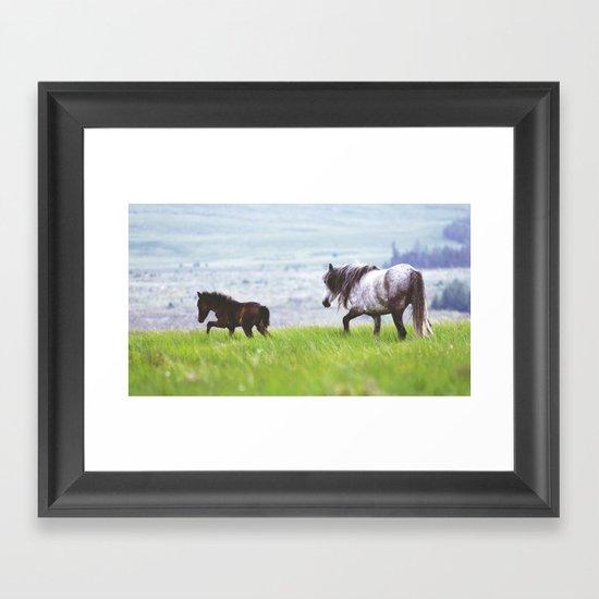 Mother & Foal Framed Art Print