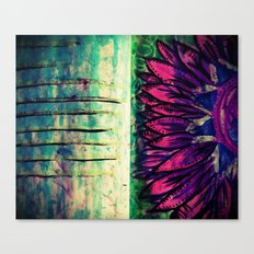 He loves me..he loves me not Canvas Print
