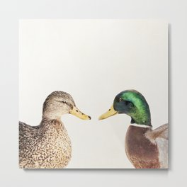 Two Ducks Metal Print