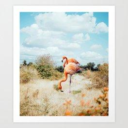 Flamingo Couple #digitalart #wildlife Art Print