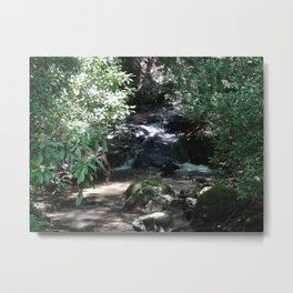 Bear Run Creek Metal Print